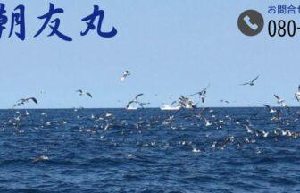 遊漁船 朝友丸